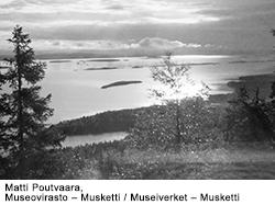 Suomi Pinta Ala